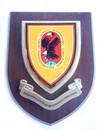 ILRRPS International Long Range Reconnaissance Patrol School Military Wall Plaque